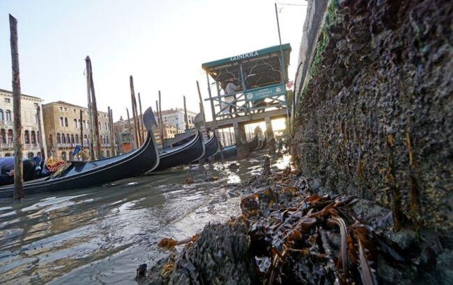 каналы венеция