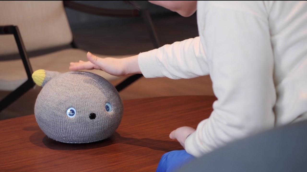 робот-кот для одиноких