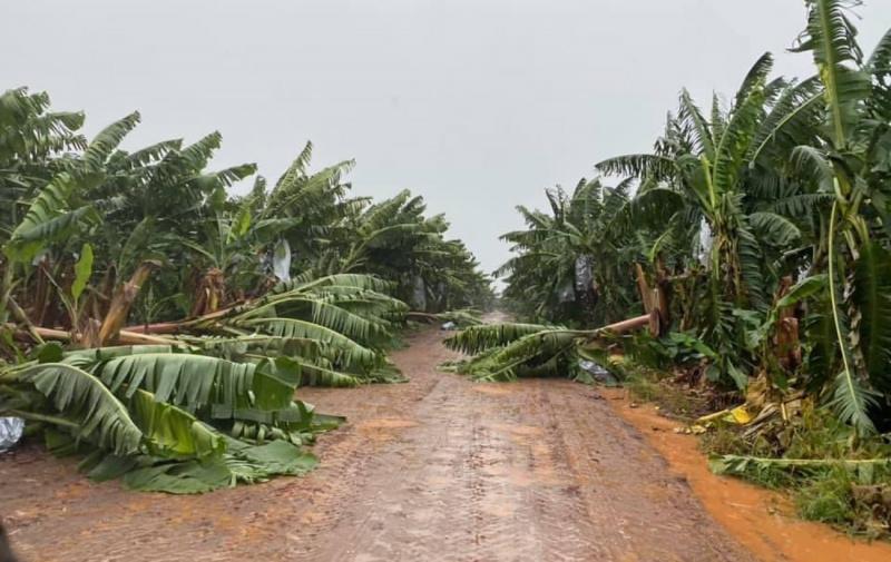 Австралия ураган