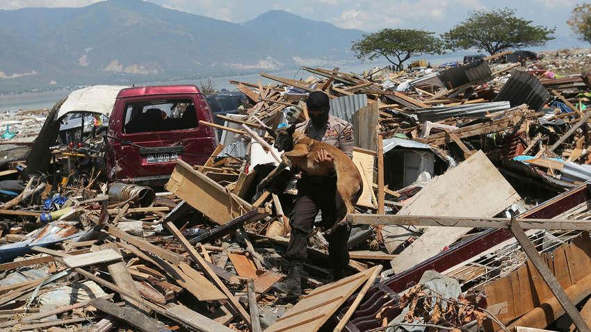 На острове Ява вследствие землетрясения погибли 7 человек